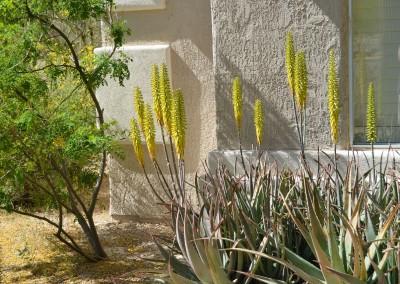 2013-04-15 Casa Hopi 005 (1280x848)