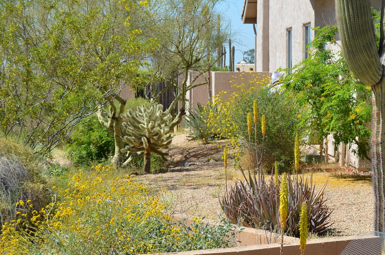 2013-04-15 Casa Hopi 033 (1280x848)